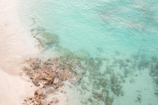 Mar azul claro com corais e uma praia de areia