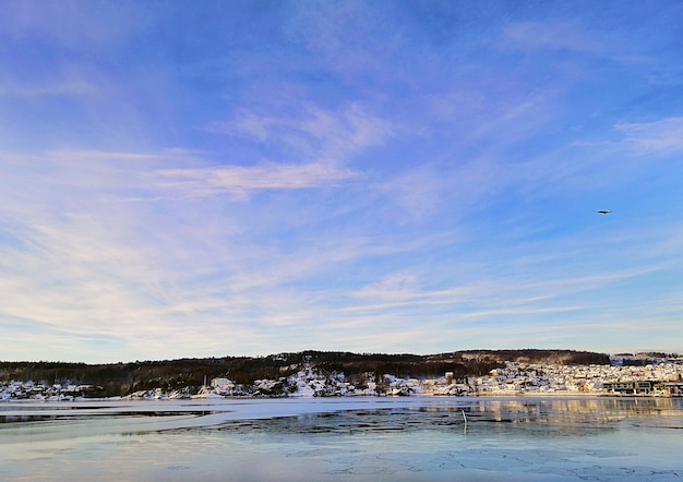 Mar cercado por edifícios e vegetação sob a luz do sol em larvik, na noruega