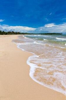 Mar e praia com espaço de cópia