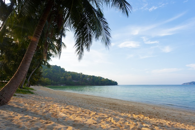 Mar, fundo de paraíso tropical
