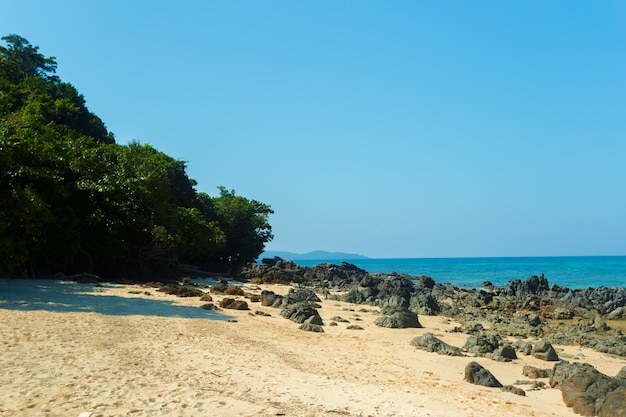 Mar, paraíso tropical,