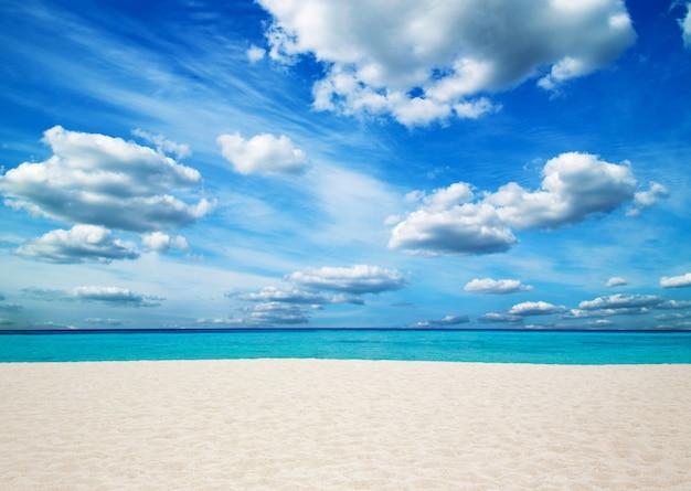 Mar tropical e praia