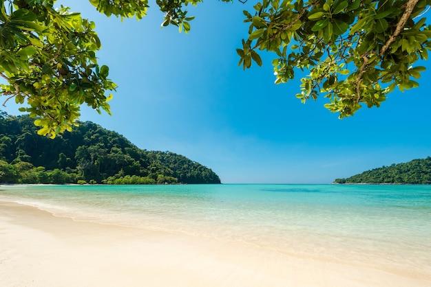 Mar turquesa maravilhoso no mar de andaman, bela praia e onda suave na ilha de surin