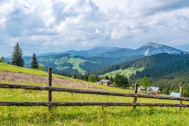Maravilhosa bela paisagem pitoresca de prados verdes contra o pano de fundo de uma floresta de coníferas crescendo nas montanhas em um dia nublado e ensolarado de verão
