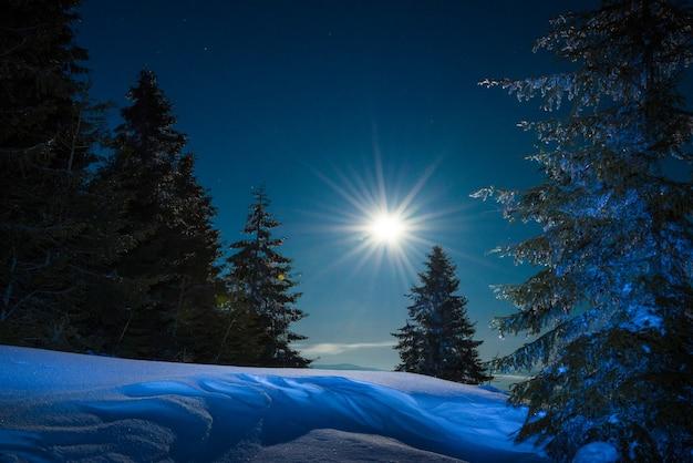 Maravilhosa paisagem de inverno com abetos crescendo em uma colina entre montes de neve em um céu estrelado de inverno
