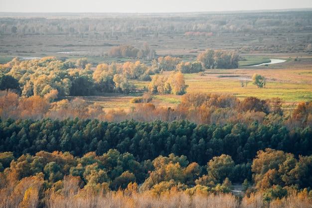 Maravilhosa paisagem de outono com bosque e rio.