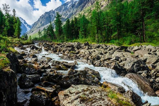 Maravilhoso fluxo de água rápida da geleira no riacho de montanha selvagem com grandes pedras molhadas. incrível paisagem cênica com floresta e montanhas nevadas. cenário atmosférico das terras altas.