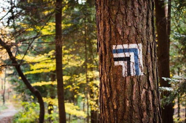Marcando a rota turística pintada na árvore. sinal de rota de viagem.