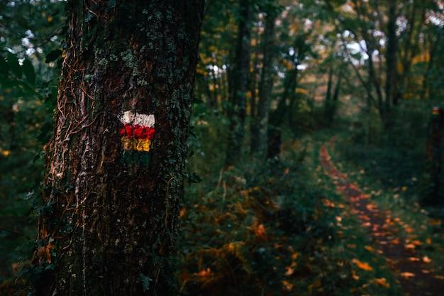 Marcas de caminho no parque natural aiako harriak, país basco.