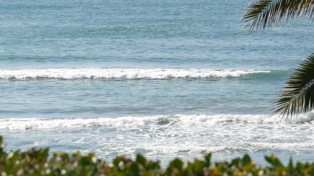 Maré do oceano pacífico, vibrações de resort de praia tropical da califórnia, eua. espuma das ondas do mar, folha de palmeira exótica verde em dia ensolarado. atmosfera de férias de verão da costa, estética de verão. superfície da água azul.