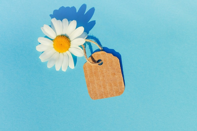 Margarida branca com uma etiqueta. conceito de vendas de verão, compras de verão