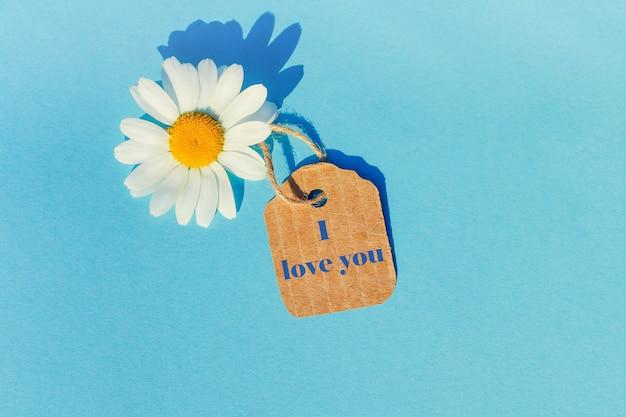Margarida branca sobre um fundo azul com uma etiqueta.