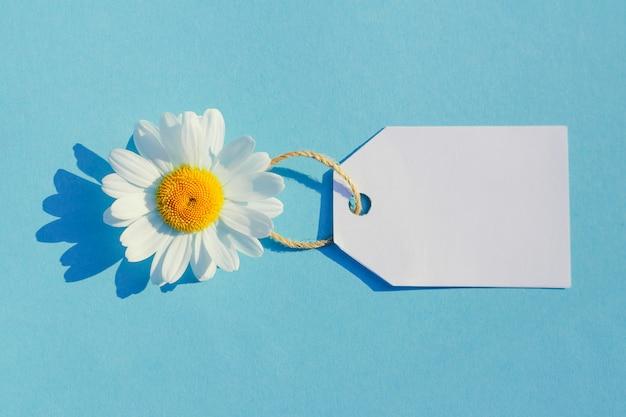 Margarida branca sobre uma mesa azul com uma etiqueta. conceito de vendas de verão, compras de verão