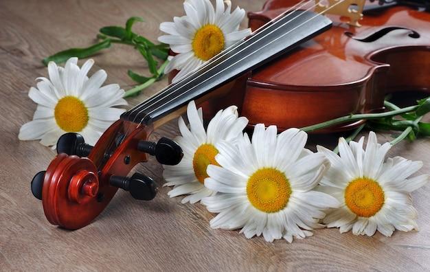 Margaridas brancas e um violino em uma mesa de madeira.