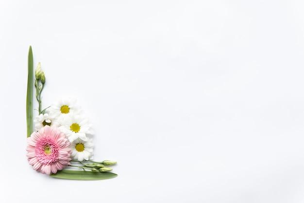 Margaridas e folhas composição