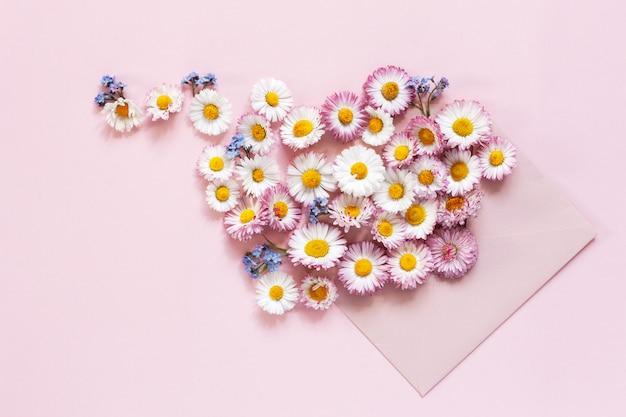 Margaridas e miosótis em um envelope cor-de-rosa em um fundo de papel cor-de-rosa.