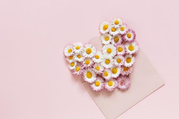 Margaridas no envelope cor-de-rosa no fundo de papel cor-de-rosa.