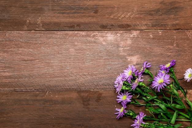 Margaridas violetas em fundo de madeira
