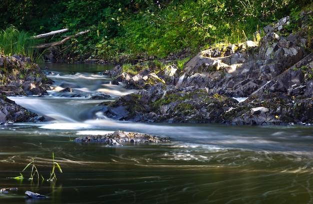 Margem do rio rochoso com floresta mista