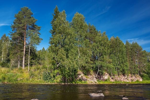 Margem do rio rochoso com floresta mista.