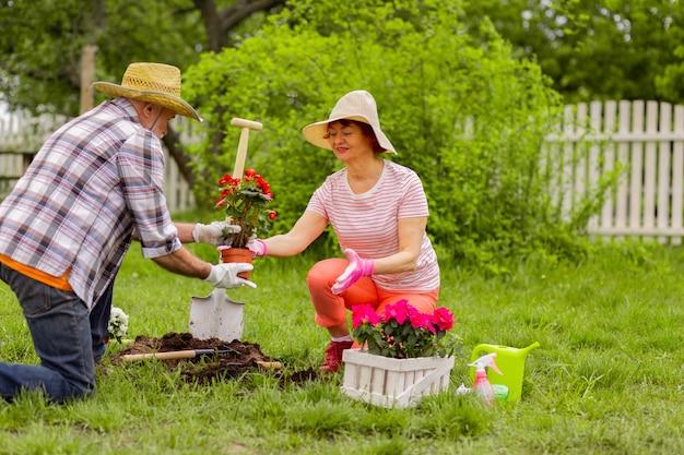 Marido amoroso. marido amoroso aposentado prestativo ajudando sua esposa idosa com o plantio de flores