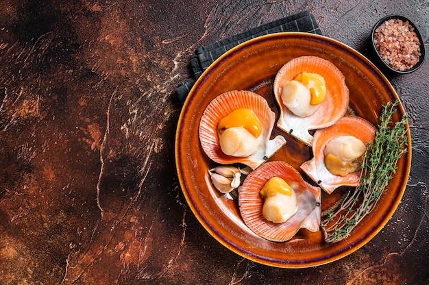 Marisco vieiras cruas num prato rústico com tomilho. fundo escuro. vista do topo. copie o espaço.