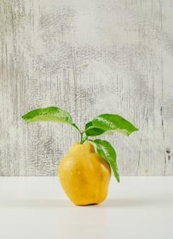 Marmelo com folhas verdes na parede branca e grunge