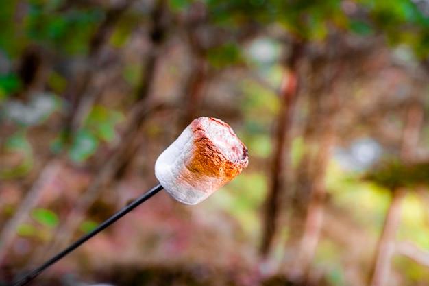 Marshmallow grelhado no palito. marshmallow doce dourado grande assando no fogo. marshmallow no espeto assado no carvão, pronto para ser comido. saboroso doce, sobremesa para descansar na natureza.