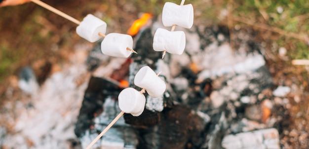 Marshmallows acima de uma lenha em chamas