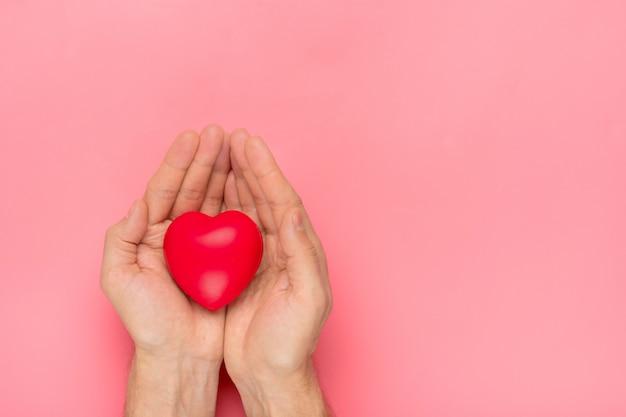 Masculinas mãos segurando um coração vermelho em mãos no fundo rosa feliz dia dos namorados