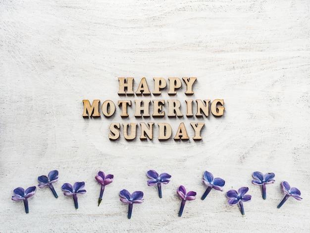 Maternidade domingo fundo com flores