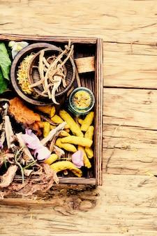 Medicina ervas naturais