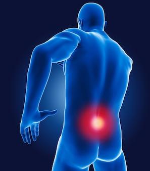 Médico 3d com parte inferior das costas em destaque