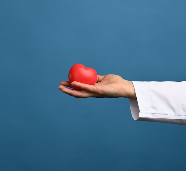 Médico de jaleco branco segura um coração vermelho sobre fundo azul, o conceito de doação e gentileza