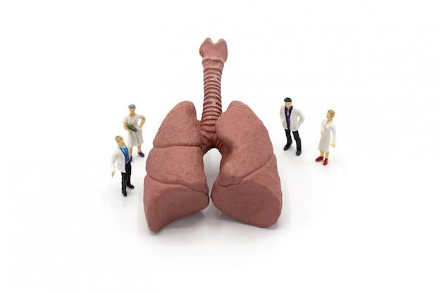Médico em miniatura e enfermeira observando e discutindo sobre os pulmões humanos