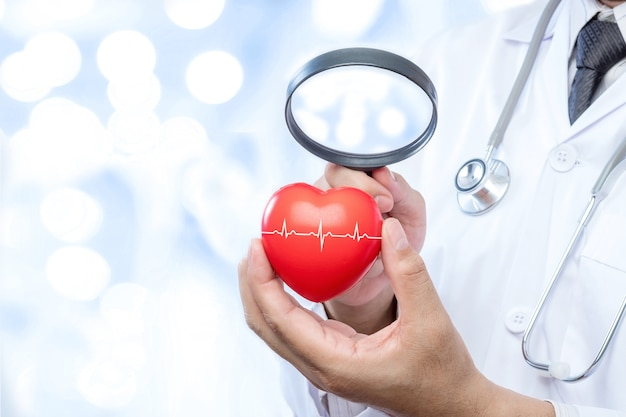 Médico profissional que segura uma lupa verifique em uma bola de coração vermelho
