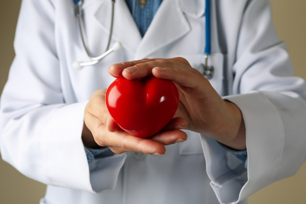 Médico segurando coração de perto e vista frontal