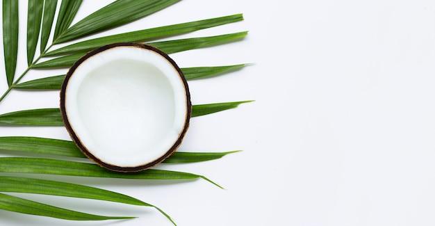 Meio coco em folhas de palmeira tropical. vista do topo