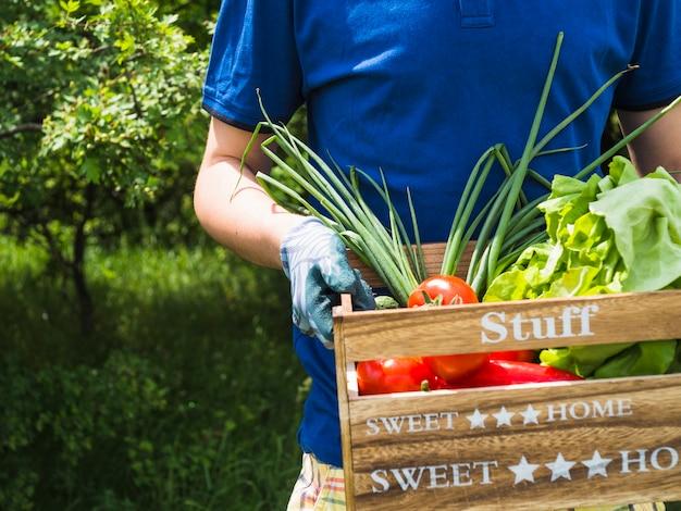 Meio, de, homem, carregar, crate, com, freshly, colhido, legumes, em, jardim