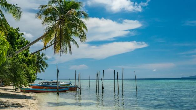 Meio-dia na ilha kri. barcos sob palmeiras. raja ampat, indonésia, papua ocidental