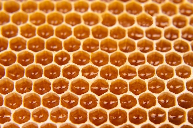 Mel de abelha fresco em um favo de mel no close-up claro. alimento natural da vitamina. textura e fundo