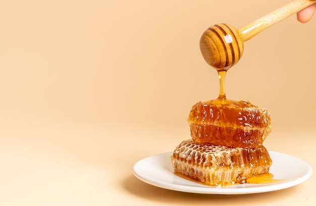 Mel e favos de mel frescos