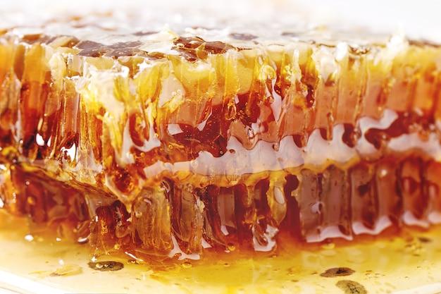 Mel em favos de mel