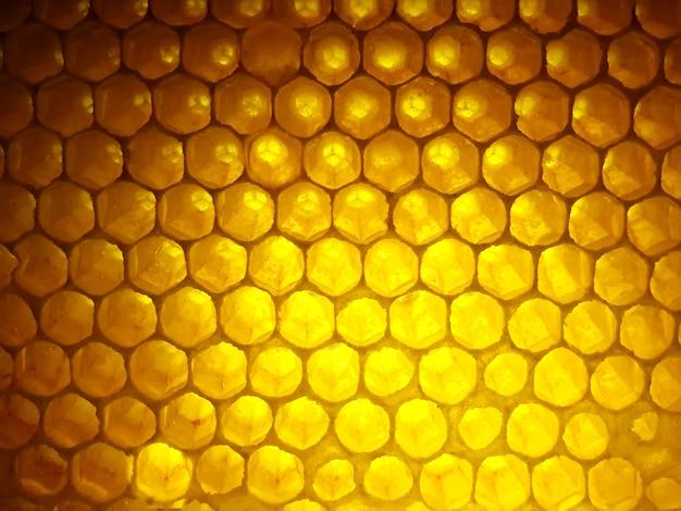 Mel fresco de abelha em favos. fundo e textura. alimento natural da vitamina. produto de trabalho de abelha