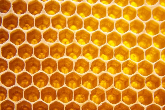 Mel fresco de abelha em favos. textura de fundo de comida natural