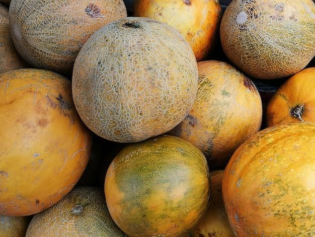 Melões maduros ao ar livre, colheita de frutas no outono.