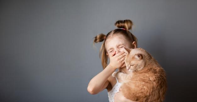 Menina 7-8 anos de idade com um gato vermelho nos braços sofre de alergias, espirra de uma rinite alérgica, parede cinza