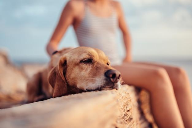 Menina abraçando seu cachorro enquanto está sentado na pedra à beira-mar
