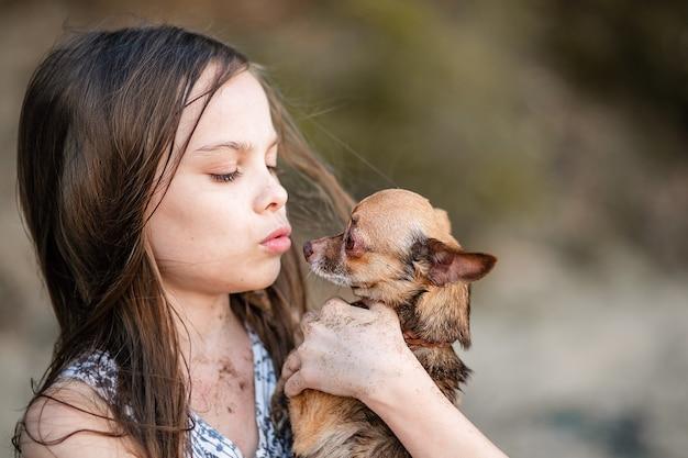 Menina adolescente bonitinha abraça o cachorro dela. retrato de uma criança com um chihuahua. uma garota com cabelo comprido mostra amor e ternura por um animal de estimação. um cão puro-sangue nas mãos de seu dono.