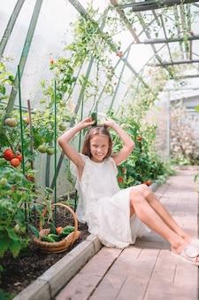 Menina adorável que colhe pepinos e tomates na estufa.